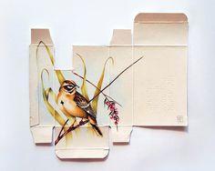 Birds Illustrations on Pharmaceutical Boxes – Fubiz™