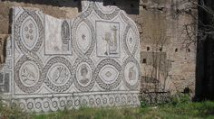 Restore Roman Mosaic in Ostia Antica, just outside of Rome.