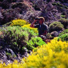 Tenerife una isla para disfrutar by Turismo de Tenerife, via Flickr