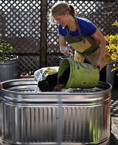 9 steps to planting grapevines at home. Make your own mini vineyard!!!