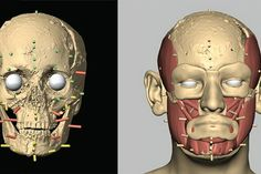 The Face Lab will be able to digitally reconstruct a person's face from their skull