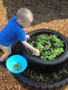 """Here old tires are used to make a raised garden bed for """"cut and come again"""" lettuces and spinach around the base. Tire Garden, Garden Soil, Gardening, Building A Raised Garden, Raised Garden Beds, Diy Garden Projects, Outdoor Projects, Growing Herbs, Growing Vegetables"""