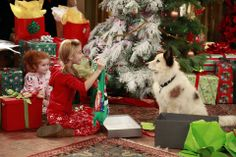 How was everyone's Christmas? Did you get everything you wanted?   #Ghannelius #DogWithABlog #AskG