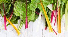 Unser Super-Gemüse der Saison? Mangold! Denn dieser ist nicht nur gesund, sondern auch vielseitig einsetzbar.