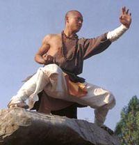 Kung Fu | Scuola dei Monaci Shaolin Italia