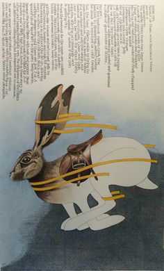 'Saddle of Hare' Recipe by Mark Hix. Artwork by Simon Drew.