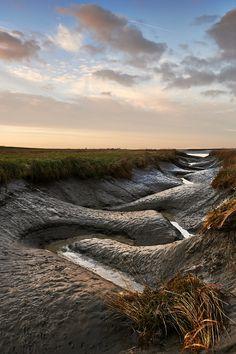 Ritme in de natuur verdronken land van Saeftinghe.