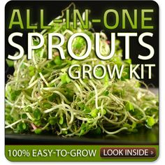 Seedsnow.com -- Sprouts Seed Bank -- Best place to buy Non-GMO seeds!