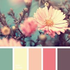 Color Palette Gentle, spring mix of colors is useful for decoration of a bedroom or the whole apartment in Shabby Chic. This palette consists of muted colors that are so. Colour Pallette, Color Palate, Color Combinations, Design Seeds, Muted Colors, Pastel Paint Colors, Wall Colours, Vintage Colors, Vintage Color Schemes