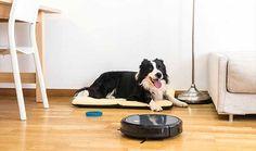 244€ Olvídate de limpiar: el robot de limpieza Conga Excellence 990  barre, aspira, pasa la mopa y friega el suelo por ti. ¡4 en 1! Home Appliances, Dust Extractor, Homemaking, Flooring, House Appliances, Appliances