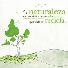Nature is economically efficient, a system without loses that recycles everything. #Naturaleza #Economía #Reciclaje