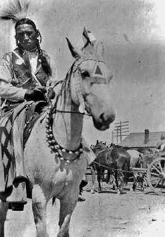 Photograph of Bob Riding Black Horses at Fort MacLeod, Alberta - Blackfoot (Kainai). Blackfoot Digital Library.