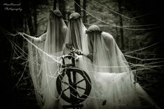 In Norse viking -mythology the Norns were the equivalent to the Moirai in Greek Mythology the sisters of fate, destiny.