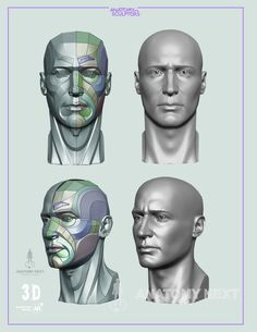Head & Neck Anatomy book sample page