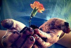 3 βουδιστικές έννοιες για τον συναισθηματικό σας κόσμο — Με Υγεία Fruit, Hands, Terra, Laughter, Spirituality, Perfume, Facebook, Twitter, Quotes