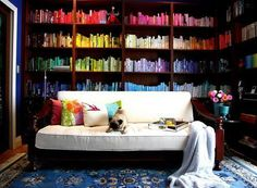 Color coded library, and a puppy to cuddle with