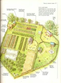 Garden Design 28 Farm Layout Design Ideas to Inspire Your Homestead Dream - Are you not sure if you can make homesteading work with the amount of land you have? Here are 28 farm layout design ideas to inspire you. The Farm, Mini Farm, Small Farm, Homestead Layout, Homestead Farm, Homestead Survival, Homestead Gardens, Survival Gear, Homestead Homes