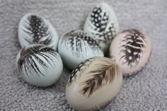 Naturally colored eggshells decoupaged with feathers. Perfect for spring decor!