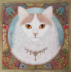 Turkish Van Cat - Google zoeken
