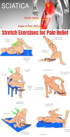 Fitness Workouts, Gym Workout Tips, At Home Workouts, Sciatica Exercises, Back Exercises, Stretching Exercises, Yoga Poses For Sciatica, Hip Flexor Exercises, Foam Roller Exercises