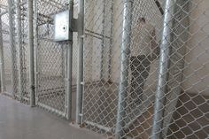 """""""I.C.E. is clearly using excessive force, since these are civil detentions,"""" said Dr. Terry Kupers, a psychiatrist who studies solitary confinement at the Wright Institute, a graduate school in psychology based in Berkeley, Calif. """"And that makes this a human rights abuse."""""""