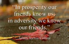 in-prosperity-our-friends-know-use-in-adversity-we-know-our-friends-adversity-quote.jpg