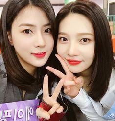 Hayoung and Joy Seulgi, Red Valvet, Red Velvet Joy, Park Sooyoung, Korean Girl Groups, Girl Crushes, Asian Beauty, Wattpad, Pink