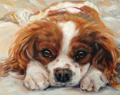 Cavalier King Charles Spaniel SOPHIA doing a little R&R, custom Pet Portrait Oil Painting by puci. puci@puciart.com