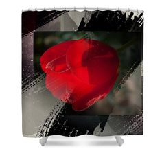 """Tulip In The Rain Shower Curtain by Janis Kirstein.  This shower curtain is made from 100% polyester fabric and includes 12 holes at the top of the curtain for simple hanging.  The total dimensions of the shower curtain are 71"""" wide x 74"""" tall."""