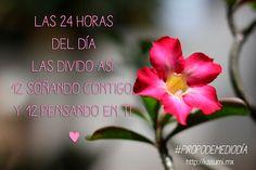 #Piropos #Frases #KasumiFlorerías
