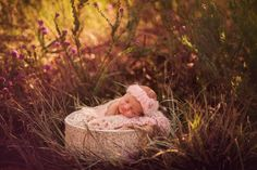 flower field newborn photography. outdoor newborn sessions perth newborn photographer www.blee-photo.com