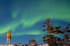 Experience - Northern Lights & Winter Nights
