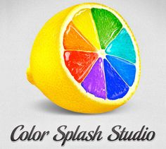 666-colour_splash_studio_logojpg_1340113268.jpg (666×596)