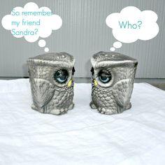 Vintage Owl Salt and Pepper Set