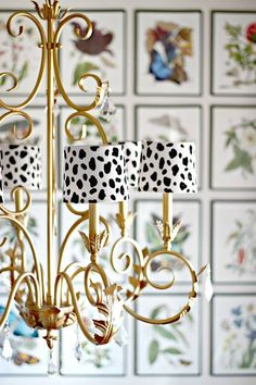 DIY Home Decor ~ Give plain white chandelier shades a graphic punch by painting them with a trendy Dalmatian print! Spray Painted Chandelier, Fabric Chandelier, White Chandelier, Chandelier Shades, Painted Lamp, Chandelier Makeover, Painting Lamp Shades, Painting Lamps, Painting Chandeliers