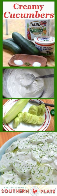 Creamy Cucumbers ~ Recipe for Fresh Cucumbers in a Light Sour Cream Dressing... Absolutely Delicious!