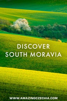 South Moravia - The Most Beautiful Places to Visit - Amazing Czechia Wine Tourism, Exotic Places, European Countries, Wineries, Heritage Site, Czech Republic, Tuscany, Travel Destinations, Landscapes