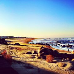 Beach, gaia