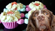 Cupcake para mis perros sin horno muy fácil