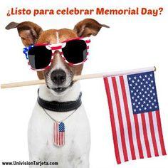 Aquí cinco consejos para ahorrar con las ofertas de Memorial Day por @Juanita Munoz de Ahorrando Dólares!