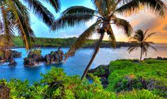 Semester in Hawaii