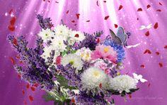 Gifs, Gif Photo, Wonderful Flowers, Beautiful Girl Photo, Margarita, Butterfly, My Favorite Things, Wallpaper, Cards