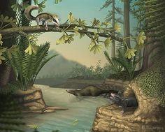 中国で発見された化石に基づくジュラ紀の哺乳類に似た小柄な2新種の想像図(画像左上と右下端)。サルやモグラのような暮らしと推定される(米シカゴ大のエープリル・ネアンダー氏提供) ▼1Mar2015時事通信|サルやモグラに似た生活=ジュラ紀化石、2新種発見-中国 http://www.jiji.com/jc/zc?k=201503/2015030100121