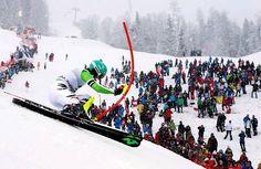 Felix Neureuther Ski Racing, Adventure Travel, Skiing, Tourism, Travel Photography, Around The Worlds, Vacation, Explore, City