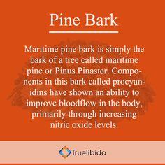 #Know more about Pine Bark @ http://truelibido.com/pine-bark