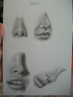 Interesting blog post about drawing facial features from Craftsy.com - Pencil Study of Noses and Mouths
