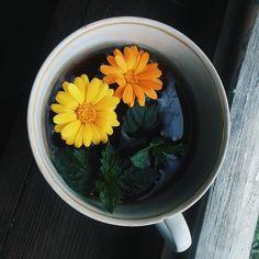 #flover #tea #love #photo #tumblr #vscocam #winter #followme