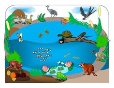 """""""In the Small, Small Pond"""" for Autism Autism Resources, Teaching Resources, Pond Habitat, Swamp Theme, Pond Animals, Literacy Centres, Picture Composition, Rhyming Words, Small Ponds"""