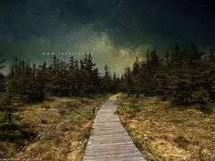 Milkyway in a swamp Pretty Pictures, Railroad Tracks, My Photos, Country Roads, Mountains, Wallpaper, Nature, Travel, Sign