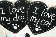 ID tags are the best way to ensure that your pet returns safely home, or if your pet needs some kind of medical treatment. Our pet ID tags come in all shapes, sizes and colors. We also have them in plastic, chrome, brass, stainless steel and a lot more.